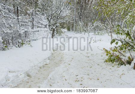 Spring landscape with path in snow after unexpected April snow storm in Dnepr city Ukraine