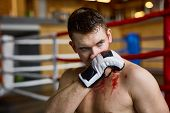 Portrait of tough muscular man wiping blood from face  after finishing fight in boxing ring poster