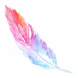 Watercolor pink purple blue bird rusticfeather isolated