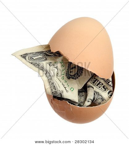 Brown Egg With Dollar Banknote