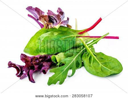 Salad Leaves Mix With Rucola, Red  Lettuce, Spinach And  Chard, Leaf Isolated On White Background.