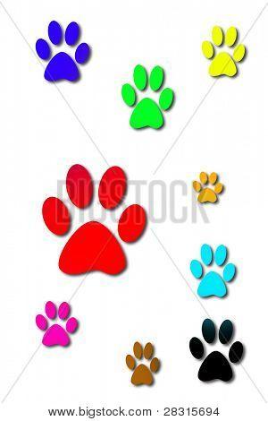 color dog prints