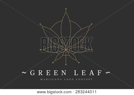 Cannabis Marijuana Hemp Green Leaf Flat Symbol Or Logo Design. Cannabis Green Silhouette Ecology Log
