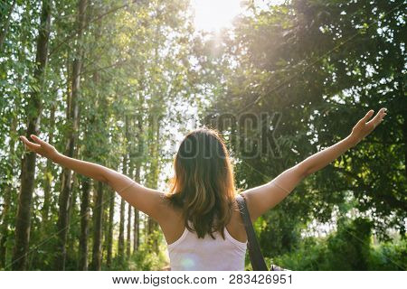 Happy Young Asian Woman Traveler With Backpack Walking In Forest. Hiker Asian Woman With Backpack Wa