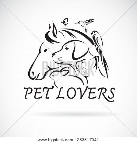 Vector Group Of Pets - Horse, Dog, Cat, Humming Bird, Parrot, Butterfly, Rabbit Isolated On White Ba