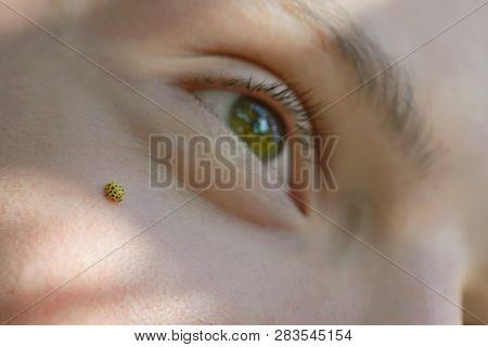 Teen Boy Lies On Meadow With Ladybug On His Face