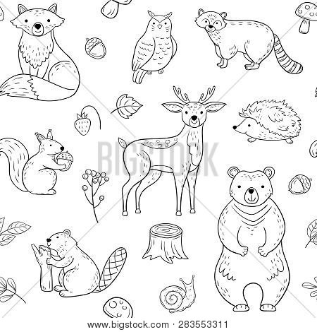 Forest Animals Seamless Pattern. Fox Owl Raccoon Beaver Bear Hedgehog Squirrel Fox. Woodland Baby An