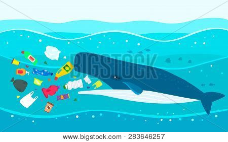 Ecological Disaster Of Plastic Garbage In The Ocean. A Large Sperm Whale Eats Plastic Trash Against