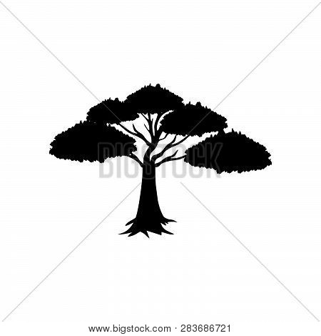 Detailed Vectoral Trees Silhouette.vector Illustration Isolated On White Background. African, Tropic