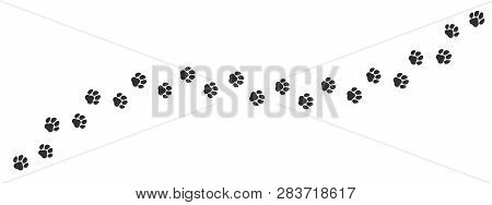 Paw Print Trail On White Background. Vector Cat Or Dog, Pawprint Walk Line Path Pattern Background