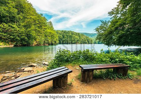 Scenic View Of The Lake Among Beech Forest. Wooden Benches On The Shore. Sunny Afternoon Summer Weat
