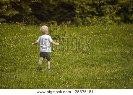 Little Blond Boy Runs In A Green Meadow On The Edge Of The Forest.