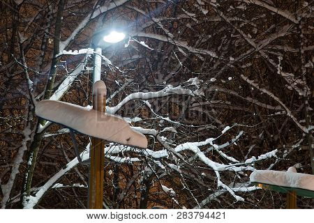 Branches Under The Snow And A Street Lamp In A Park