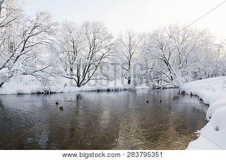 River And Trees Under Snow On Winter Day