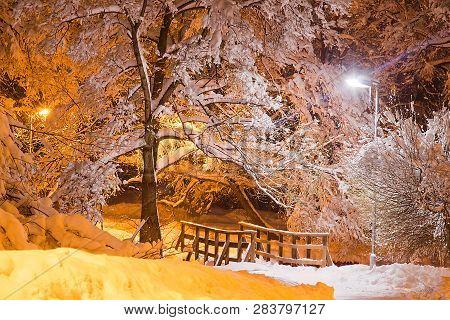 Trees Under Snow And Wooden Bridge In Winter Evening