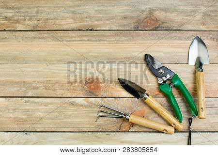 Composition With Flowers And Gardening Tools On The Wooden Background With Space For Text. Top View.