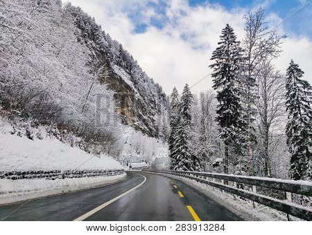 winter scene with icy slick road driving situation curving road covered with snow and snowy trees all around