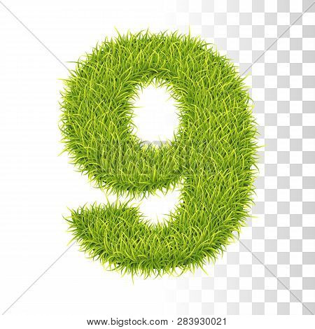 9. Vector Number Nine Illustration. Fresh Green Grass Realistic Texture