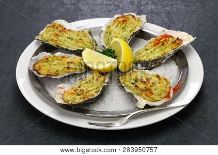 oysters rockefeller, baked oysters on half shell topped with green sauce and bread crumbs
