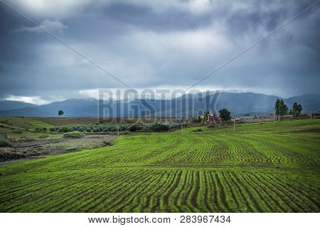 Green Fields In Foothills Of The Atlas Mountains In Morocco