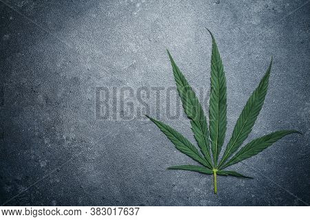 Cannabis (marijuana) Leaves On A Dark Background. Medical Marijuana (hemp) And Products  With Cannab