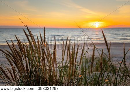 Beautiful Golden Sunset Through The Grass At The Beach. Sun Setting Into The Sea On Tranquil Evening