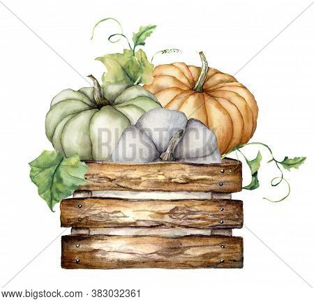 Watercolor Autumn Composition With Pumpkins And Leaves In The Wooden Box. Hand Painted Blue, Green A