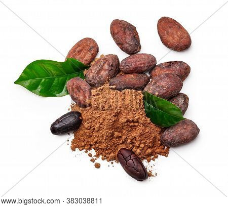 Cocoa Beans With Cocoa Leaves And Cocoa Powder Isolated On White. Top View.
