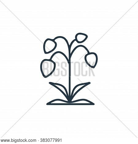 lily icon from spring collection isolated on white background. icon isolated on white background fro