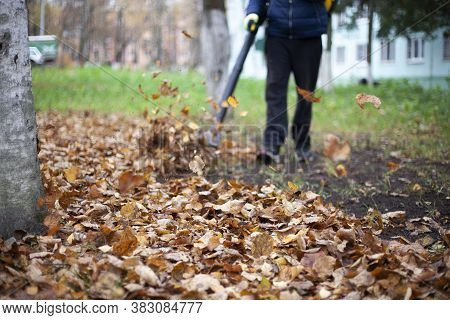 Cleaning Leaves In The Garden. The Gardener Is Fanning The Foliage. A Man With A Wind Generator Swee