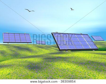 Solar Panels In Nature