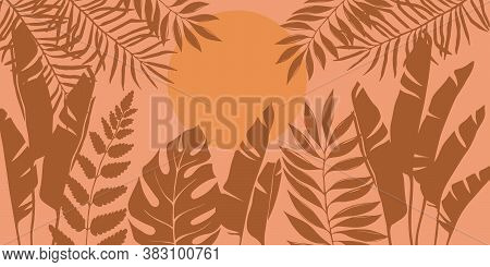 Silhouettes Of Tropical Trees And Leaves, Banana, Palm, Monstera, Fern. African Landscape At Sunset