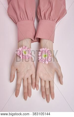 Beauty Hands Woman With Pink Flowers In Her Hands On The Table. Natural Cosmetic For Hand Skin Care.