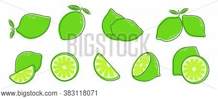 Cut Lime. Fresh Citrus Fruit, Slice And Leaves. Isolated Green Lemon Illustration, Juicy Organic Fre
