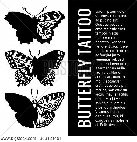 Collection Of Realistic Butterfly Tattoos . Beautiful Winged Butterfly. Set Of Butterfly Tattoos. My
