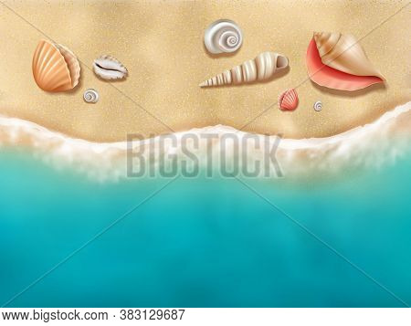Seaside Top View. Sun Beach With Seashells On Sand Near Ocean Water Vector Realistic Background. Oce