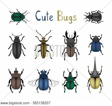 Cute Bug Icon Set. Cartoon Nature Of Macro Insects, Cute Small Colorful Beetles, Vector Illustration