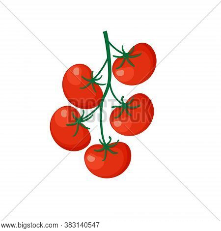 Fresh Red Tomato Vegetable Isolated On White Background. Tomato Icon For Market, Recipe Design. Orga