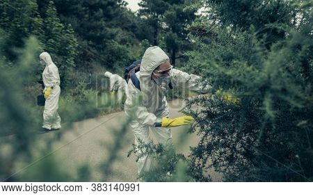 People With Bacteriological Protection Suits Looking For Evidence Outdoors