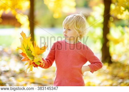 Little Boy Having Fun During Stroll In The Forest At Sunny Autumn Day. Child Playing With Maple Leav