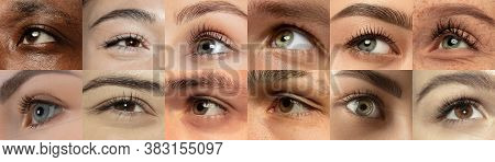 Set, Collage Of Different Types Of Male And Female Eyes. Concept Of Beauty, Mental Health, Ophtalmol