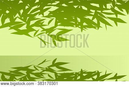 Green Tree Branches Bent Over The Pool. Reflection Of Foliage In Water. Beauty In Nature. Vector Ill