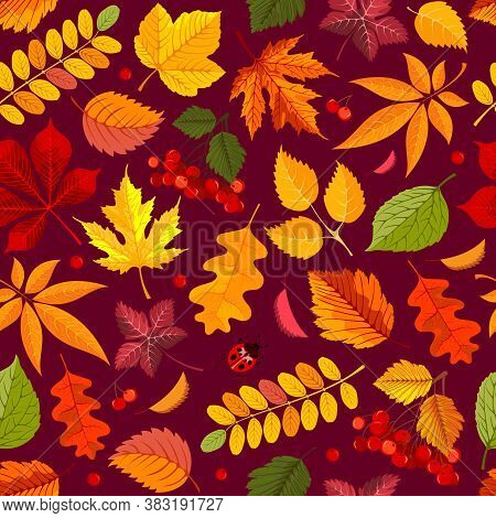 Seamless Pattern In Red And Orange Tones With Autumn Leaves And Rowanberry. Fall Background With Map