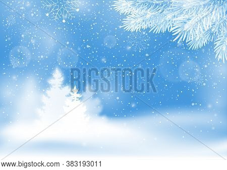 Winter Snowy Background. Landscape With Snowfall, Fir Tree And Spruce Branches With Frost. Backdrop