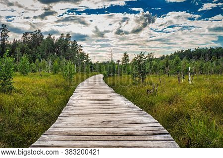 Hiking Trail, Educational Trail, Walking Trail Kaunas Lithuania