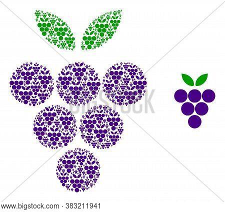 Vector Grape Berry Composition Is Done With Random Recursive Grape Berry Icons. Recursive Compositio