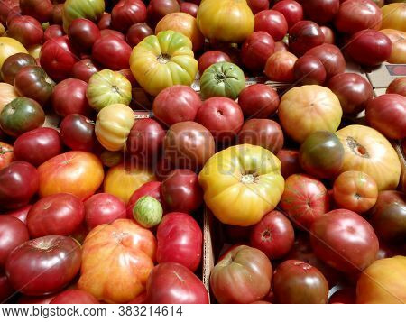 Bunch Of Multi-colored Heirloom Tomatoes Of All Sizes In Boxes.