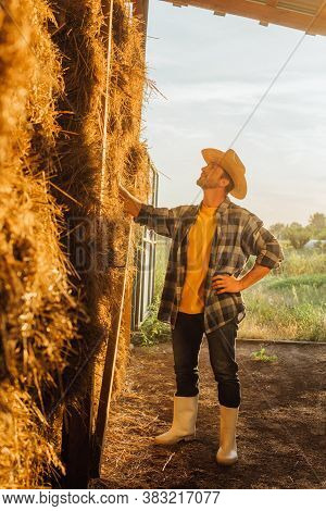 Rancher In Rubber Boots, Straw Hat And Plaid Shirt Touching Stack Of Hay On Farm