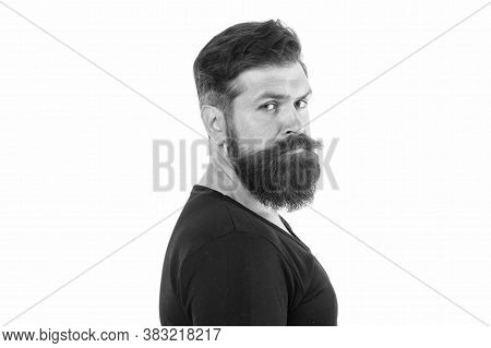 Male Portrait. You Will Look Unkempt While Waiting For Beard Grow. Have Patience To Keep Beard Untou