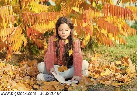 Hobby And Interests. Girl Read Book Autumn Day. Little Child Enjoy Learning At Backyard Or Park. Kid
